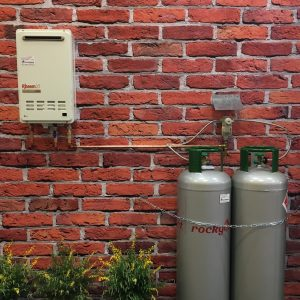 gas rheem continuous flow hot water system